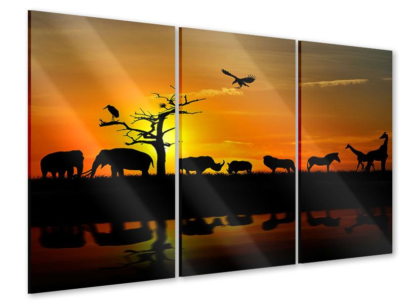 3 Piece Acrylic Print Safari Animals At Sunset