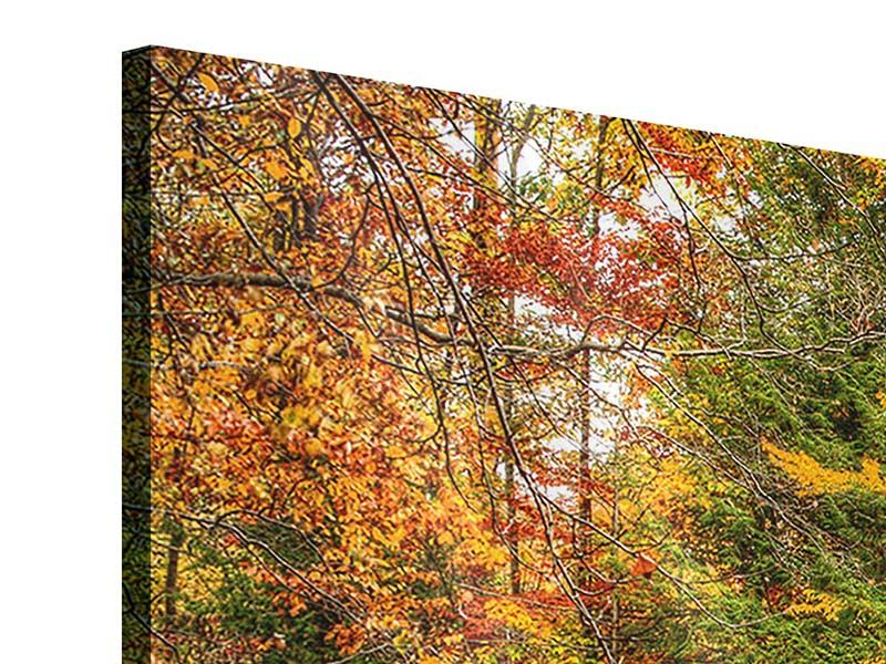 Panoramic 3 Piece Acrylic Print Autumn At The Waterfall