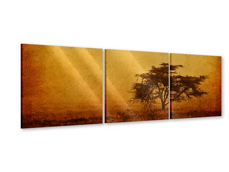 Panoramic 3 Piece Acrylic Print Sunset Mood