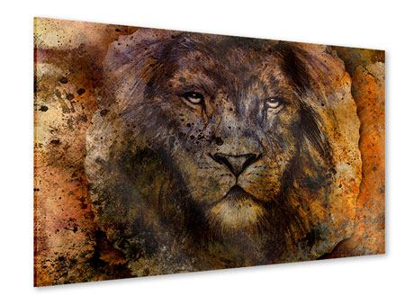 Acrylic Print Portrait Of A Lion