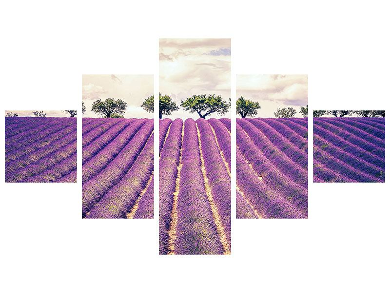 5 Piece Acrylic Print The Lavender Field