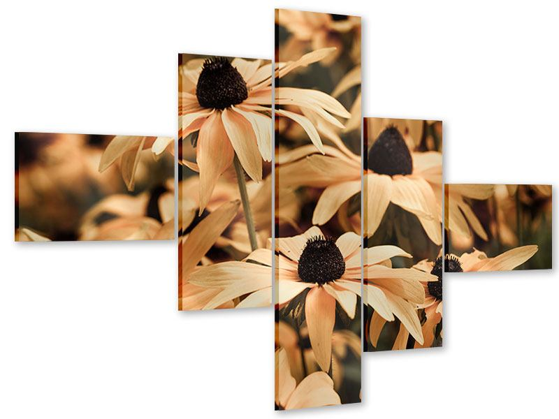 Modern 5 Piece Acrylic Print Daisies In Sepia