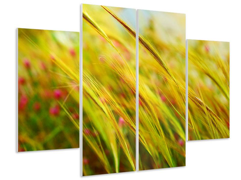 4 Piece Forex Print The Wheat Field