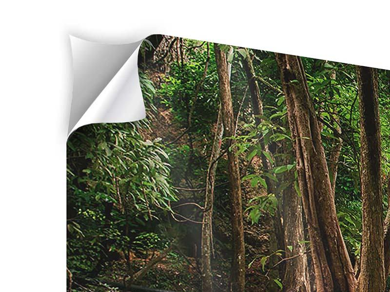 Modern 4 Piece Self-Adhesive Poster Deep Forest