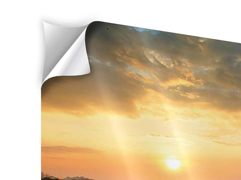 Modern 4 Piece Self-Adhesive Poster Sunflower Field At Sunset