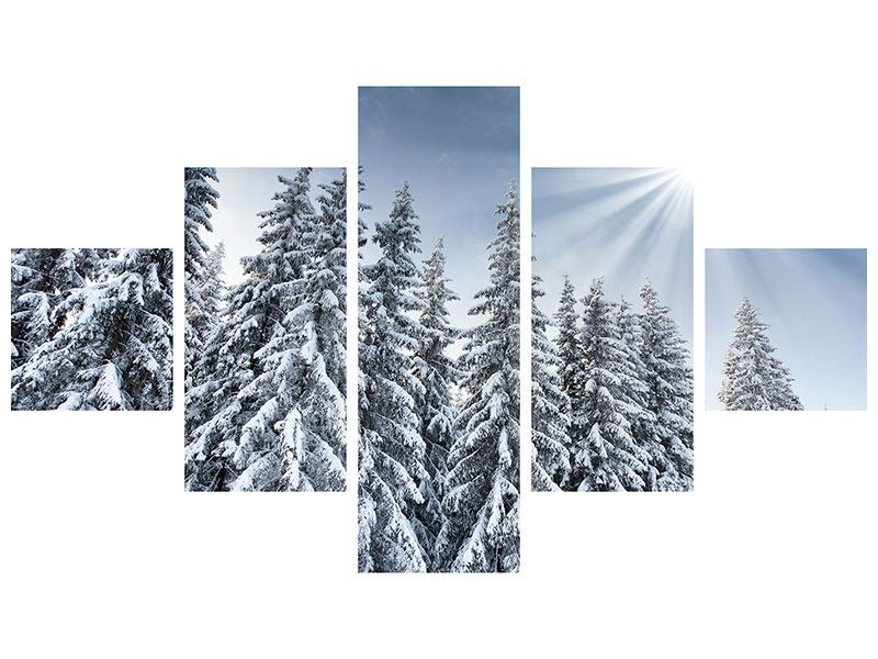5 Piece Self-Adhesive Poster Winter Firs
