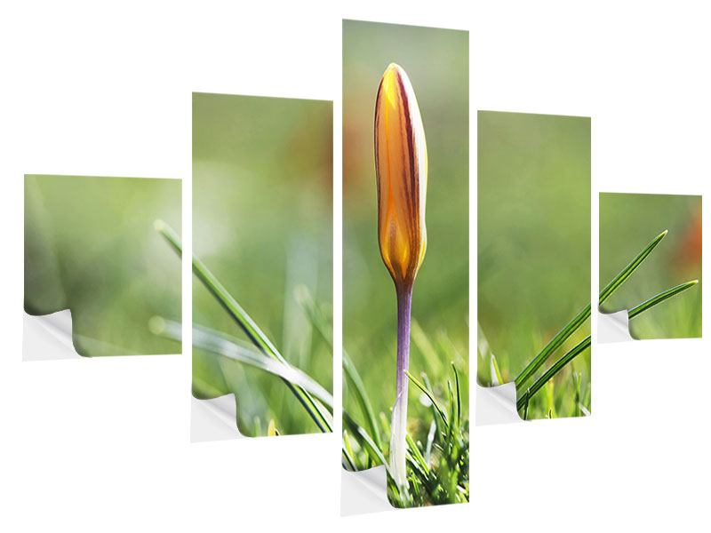 5 Piece Self-Adhesive Poster The Flower Bud