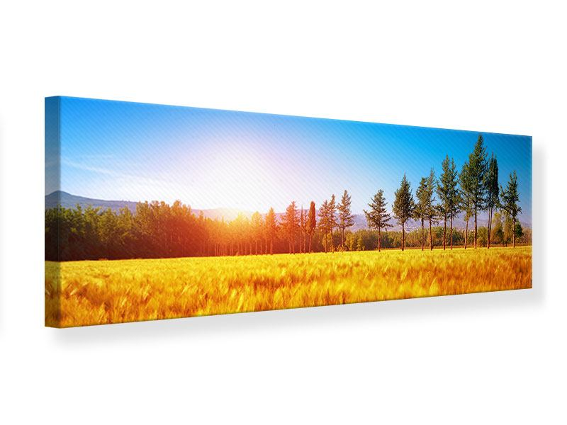 Panoramic Canvas Print The Autumn