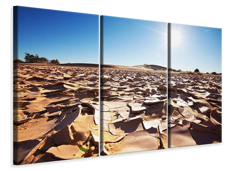 3 Piece Canvas Print Drought