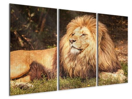 3 Piece Metallic Print Lion