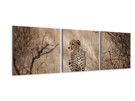Panoramic 3 Piece Metallic Print Elegant Cheetah