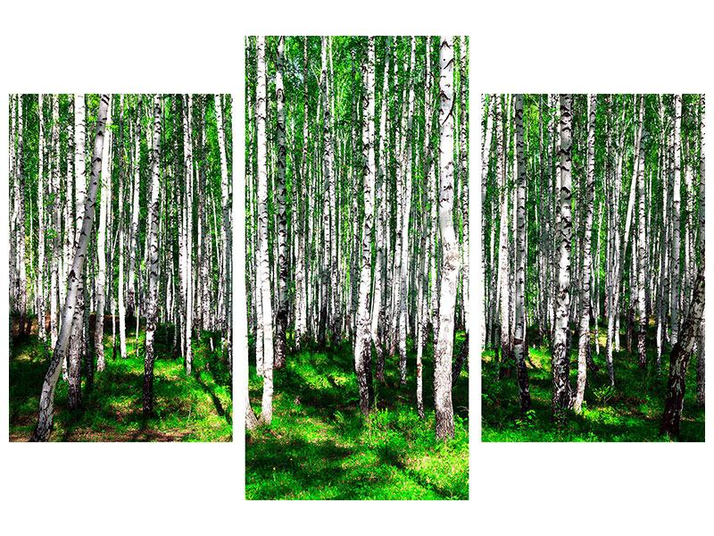 Modern 3 Piece Metallic Print Summerly Birch Forest