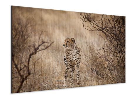 Metallic Print Elegant Cheetah