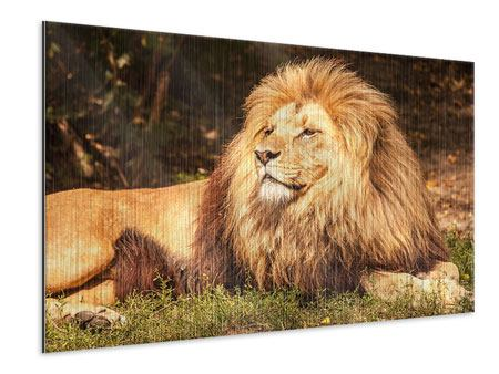 Metallic Print Lion