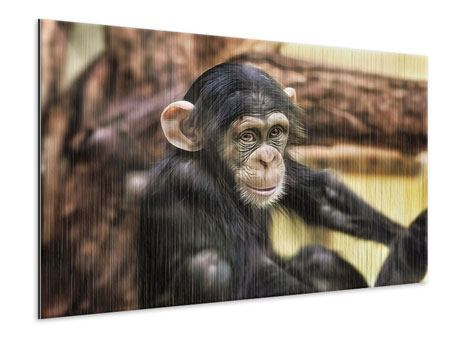 Metallic Print The Chimpanzee