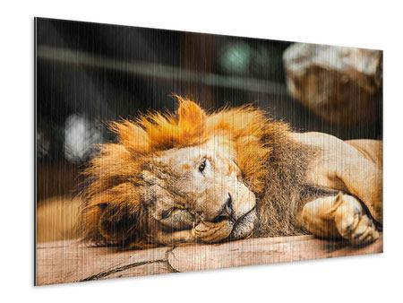 Metallic Print Relaxed Lion