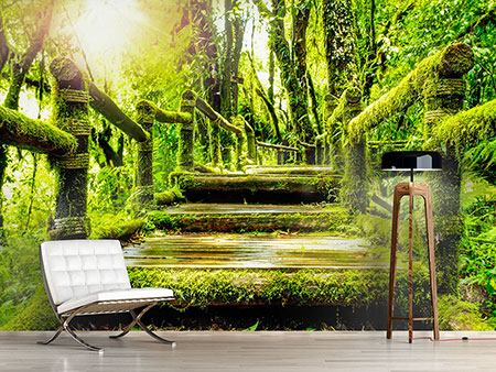 Photo Wallpaper Moss